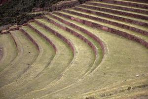 landwirtschaftliche terrassen in pisac, peru foto