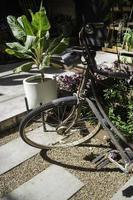 Fahrrad in einem Garten