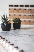 Notizbuch mit zwei Pflanzen
