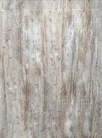 Holz-Grunge-Textur foto