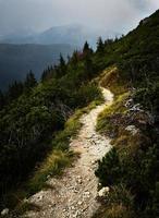 Wanderweg auf einem Berg foto