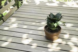 Gartenpflanzentopf im Freien foto