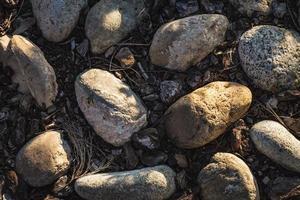Kopfsteinpflaster mit Felsbrocken und Korkrinde foto