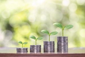 Pflanzen wachsen auf einem Stapel Münzen für das Finanz- und Bankkonzept