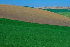 bunte ländliche Hügel foto
