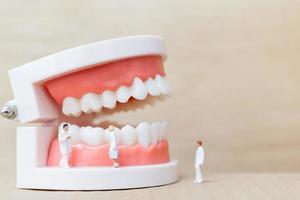 Miniaturzahnärzte und Krankenschwestern beobachten und diskutieren über menschliche Zähne mit Zahnfleisch und Zahnschmelzmodell auf einem hölzernen Hintergrund foto
