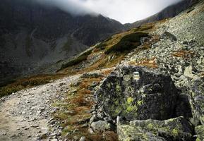 Wanderweg auf einem nebligen Berg foto
