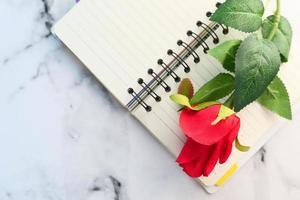 rote Rosenblume auf Notizblock auf Tisch