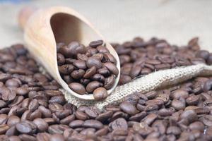 Draufsicht auf frische Kaffeebohnen foto