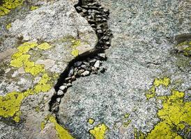Detail von Granitfelsen mit gelbem Moos foto