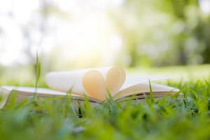 Buch als Herzform auf Gras im Park-, Wissens- und Bildungskonzept geöffnet foto