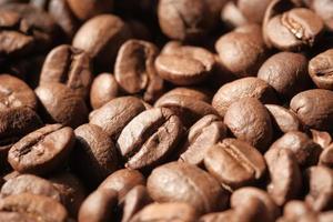 frische Kaffeebohnen foto