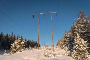 Stromleitungen in einer schneebedeckten und sonnigen Winterlandschaft