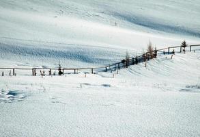 verschneite Wiese mit Zaun foto