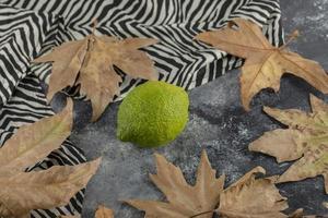 eine grüne reife Zitrone mit getrockneten Blättern