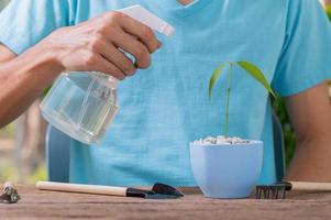 eine Person, die Wasser auf eine Pflanze in einem Topf sprüht foto