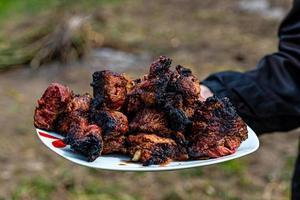 Die menschliche Hand hält einen weißen Teller mit frisch gebackenem Kebab foto