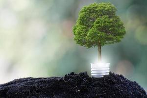 Glühbirne retten Welt- und Geschäftswachstumskonzept foto
