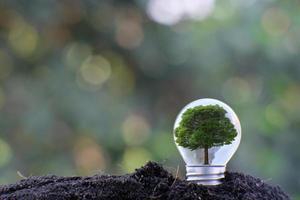 Energiesparende Glühbirne und Geschäfts- oder Geschäftswachstumskonzept foto