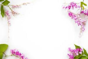 Rahmen von rosa Blumen mit grünen Blättern lokalisiert auf weißem Hintergrund foto