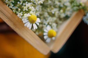 Nahaufnahme des offenen Buches mit Wildblumen