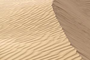 schöne Sanddüne in der Wüste, Jaisalmer, Rajasthan, Indien. foto