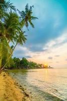 schöne Paradiesinsel mit Strand und Meer um Kokospalme foto