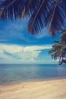 schöner tropischer Strand und Meer im Freien in der paradiesischen Insel