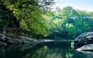 felsiges Ufer in einem Wald