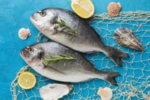 flach legen Fisch auf blauem Hintergrund foto