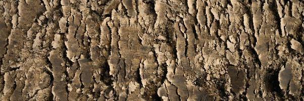 Hintergrundtextur von der glatten Oberfläche des Erdbodens foto