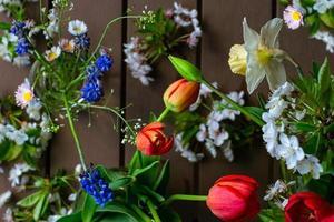 Blumenhintergrund von roten Tulpen, Feldgänseblümchen, Muscaris, Narzissen, Kirschblüten
