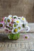 Strauß gewöhnlicher Gänseblümchen in einem Glas auf einem Holztisch
