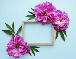 Holzrahmen umgeben von schönen rosa Pfingstrosen auf einem blauen Hintergrund foto