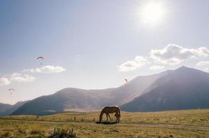 Pferd mit Fallschirmspringern und Bergen im Hintergrund foto