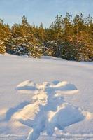 Schneeengel im Schnee foto