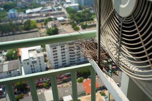 Draufsicht des Nahaufnahmevogelnestes auf dem Stahlkäfig der Klimaanlage an der Terrasse der hohen Eigentumswohnung mit unscharfem Stadtbildhintergrund im Sonnenscheinmorgen foto