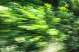 abstrakter Hintergrund der Hochgeschwindigkeitsbewegung verwischt von Bäumen außerhalb des Zuges foto