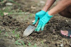 Hände von Menschen, die den Boden mit einem Pflanzlöffel graben foto