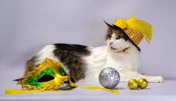 Katze trägt einen Hut mit Dekorationen foto