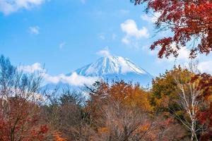 schöne landschaft bei mt. Fuji, Japan