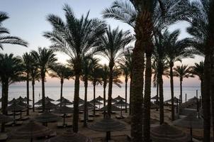 leerer Strand mit Sonnenschirmen bei Sonnenuntergang