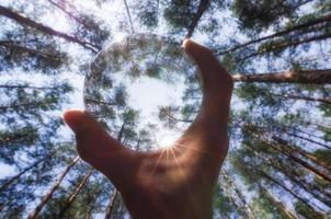 Person, die eine Glaskugel in einem Wald hält foto