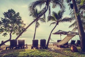 schöne Kokospalme am Strand und am Meer foto