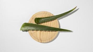 Aloe Vera Blätter auf Holzschale foto