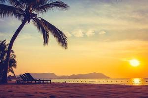 schöner Strand und Meer mit Palme foto