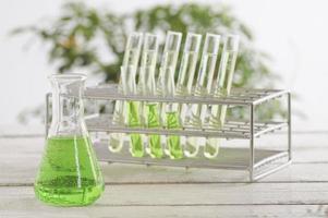 Kolben und Reagenzgläser mit Pflanze im Hintergrund foto