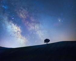 galaktisches Zentrum der Milchstraße mit einer Baumsilhouette auf einer Wiese foto
