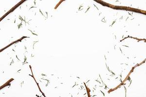 Ory gebrochene Zweige gerahmt Hintergrund foto