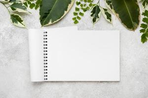 flache Lage der schönen Pflanzenblätter mit Notizbuch foto